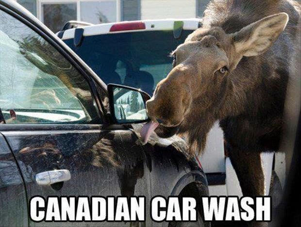 Canadian car wash Picture Quote #1