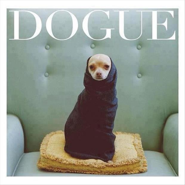 Dogue Picture Quote #1