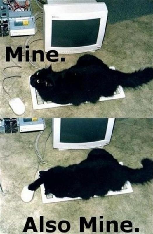 Mine. Also mine Picture Quote #1