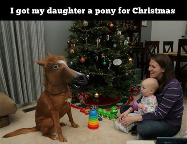 I got my daughter a pony for Christmas Picture Quote #1