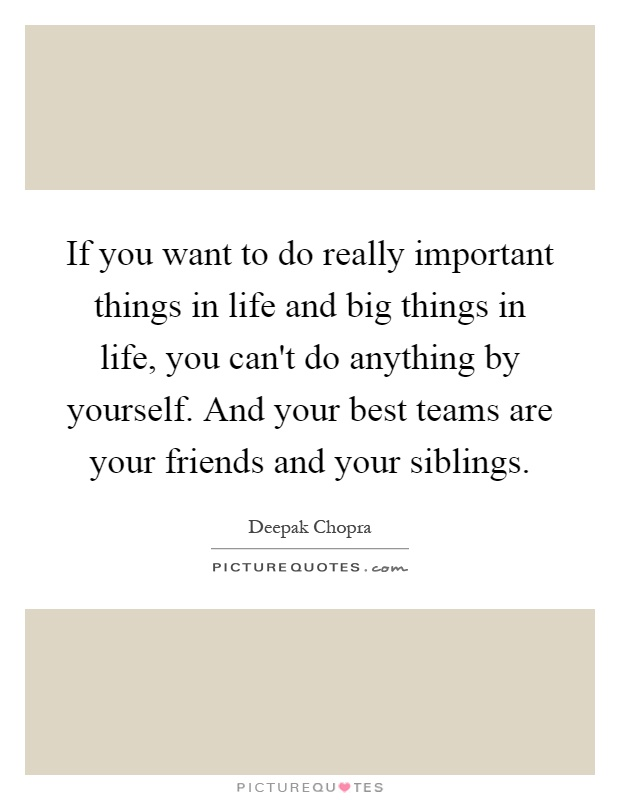 If you want to do really important things in life and big things in life, you can't do anything by yourself. And your best teams are your friends and your siblings Picture Quote #1