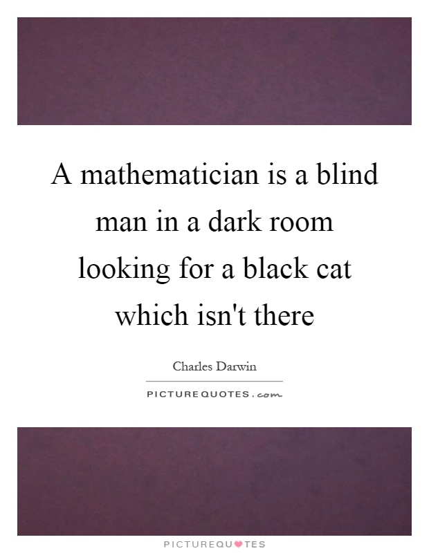 A mathematician is a blind man in a dark room looking for a black cat which isn't there Picture Quote #1