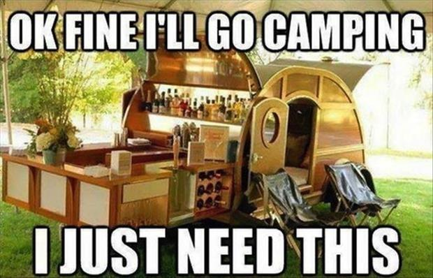 Ok Fine Ill Go Camping I Just Need This Picture Quote 1