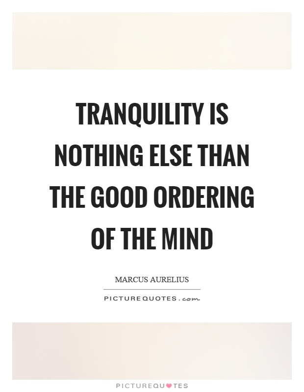 Tranquility is nothing else than the good ordering of the mind Picture Quote #1