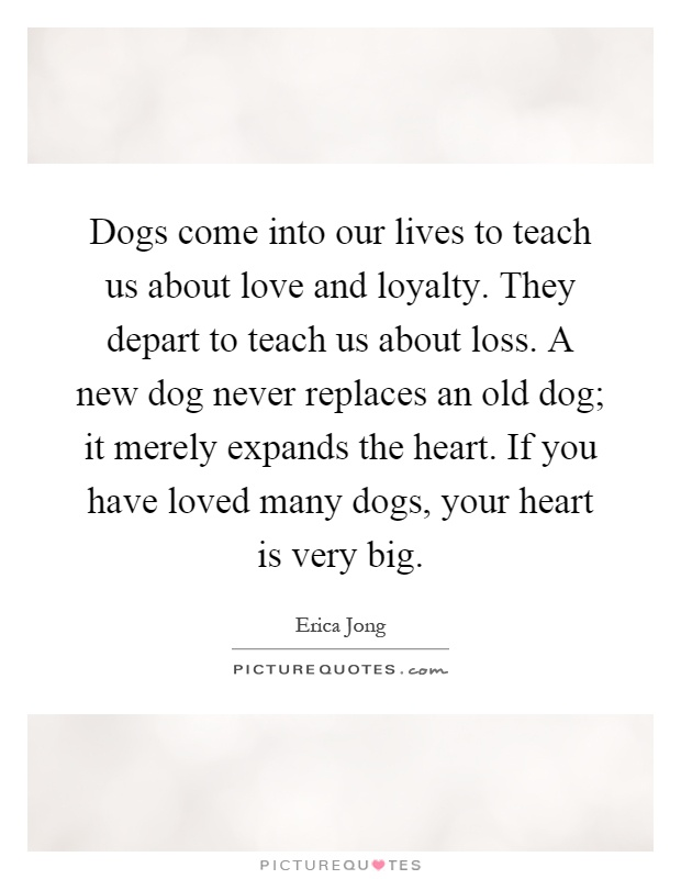 Dogs come into our lives to teach us about love and loyalty. They depart to teach us about loss. A new dog never replaces an old dog; it merely expands the heart. If you have loved many dogs, your heart is very big Picture Quote #1
