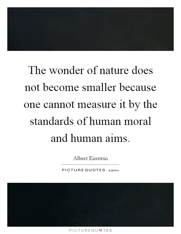 The wonder of nature does not become smaller because one cannot measure it by the standards of human moral and human aims Picture Quote #1