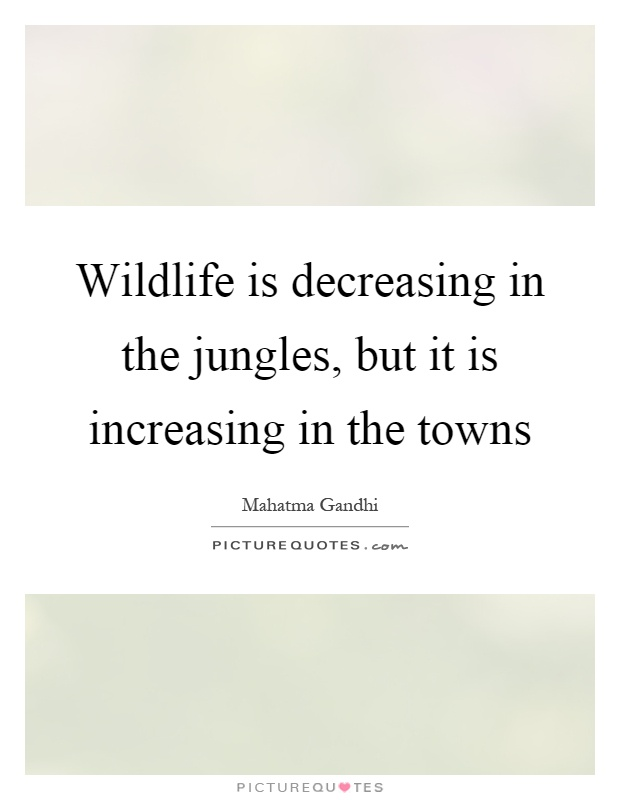 Wildlife is decreasing in the jungles, but it is increasing in the towns Picture Quote #1