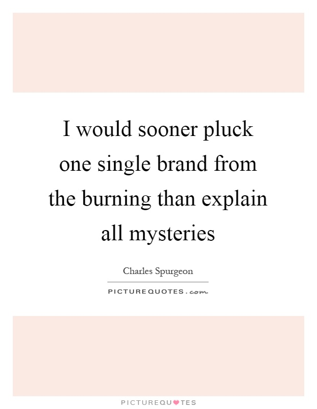 I would sooner pluck one single brand from the burning than explain all mysteries Picture Quote #1