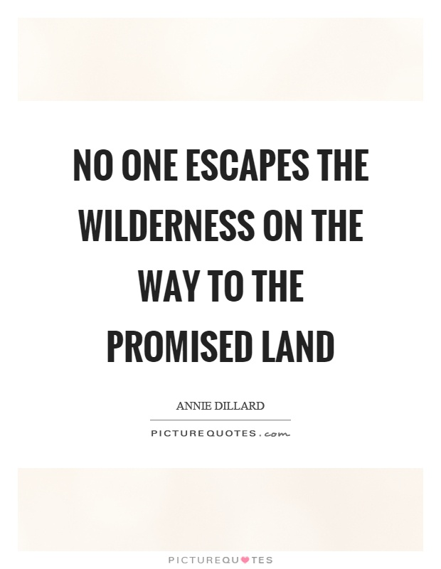 No one escapes the wilderness on the way to the promised land Picture Quote #1