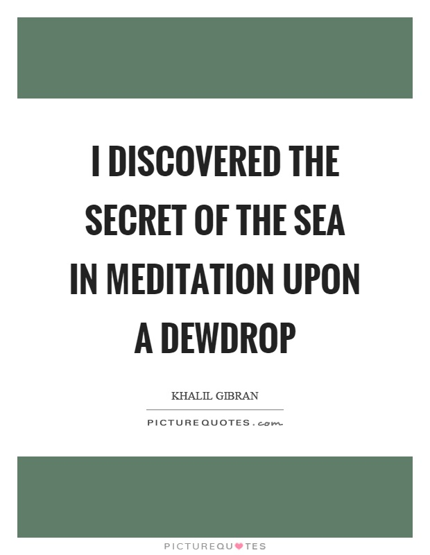 I discovered the secret of the sea in meditation upon a dewdrop Picture Quote #1
