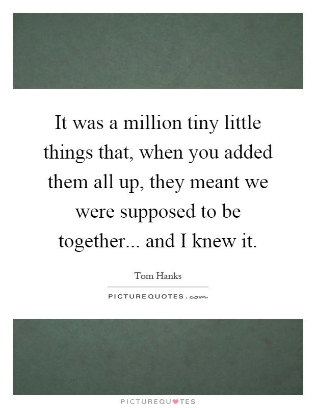 It was a million tiny little things that, when you added them all up, they meant we were supposed to be together... and I knew it Picture Quote #1