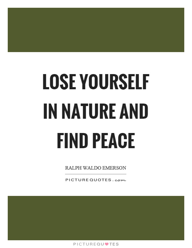 Lose yourself in nature and find peace Picture Quote #1