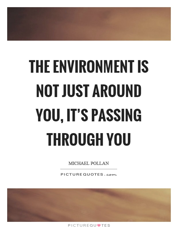 The environment is not just around you, it's passing through you Picture Quote #1
