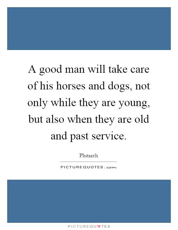 A good man will take care of his horses and dogs, not only while they are young, but also when they are old and past service Picture Quote #1