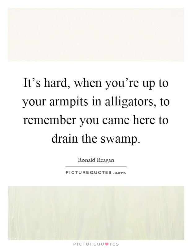 It's hard, when you're up to your armpits in alligators, to remember you came here to drain the swamp Picture Quote #1