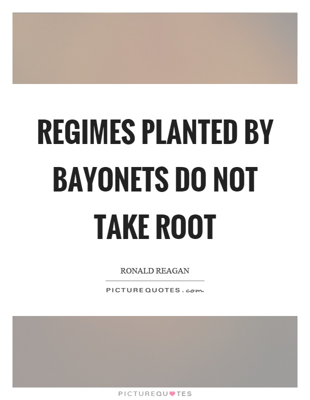 Regimes planted by bayonets do not take root Picture Quote #1