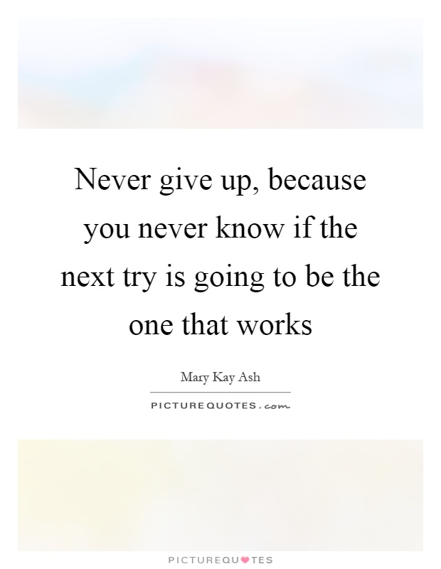 Never give up, because you never know if the next try is going to be the one that works Picture Quote #1