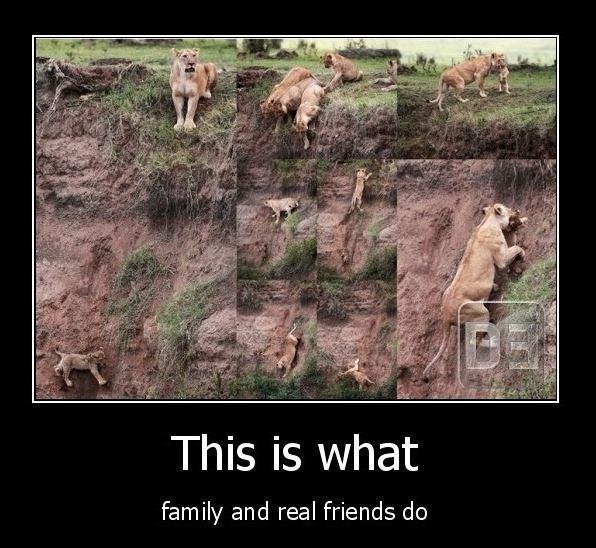 This is what family and real friends do Picture Quote #1