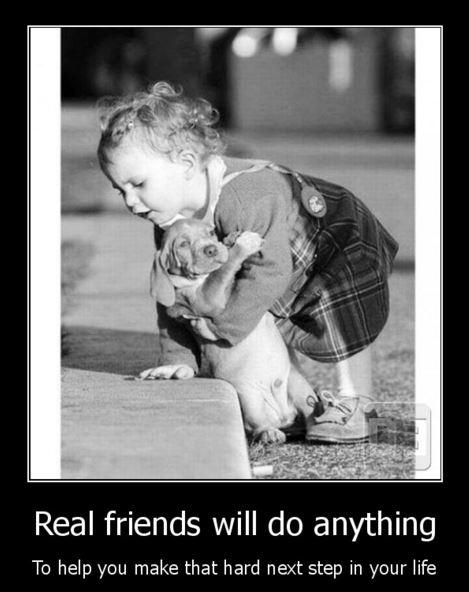 Real friends will do anything to help you make that hard next step in your life Picture Quote #1