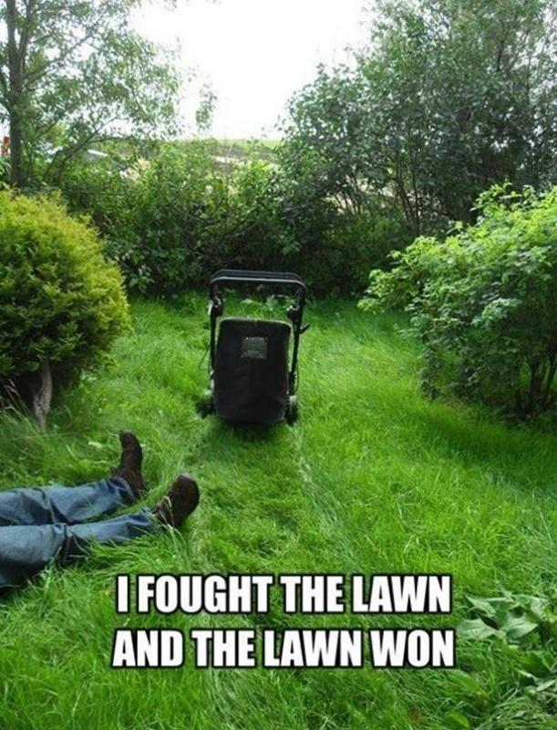 grass cutting quotes