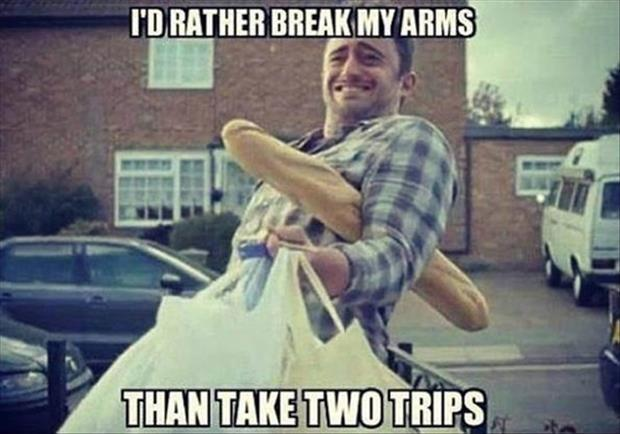 I'd rather break my arms that take two trips Picture Quote #1