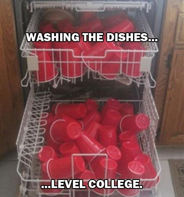Washing the dishes, level college Picture Quote #1