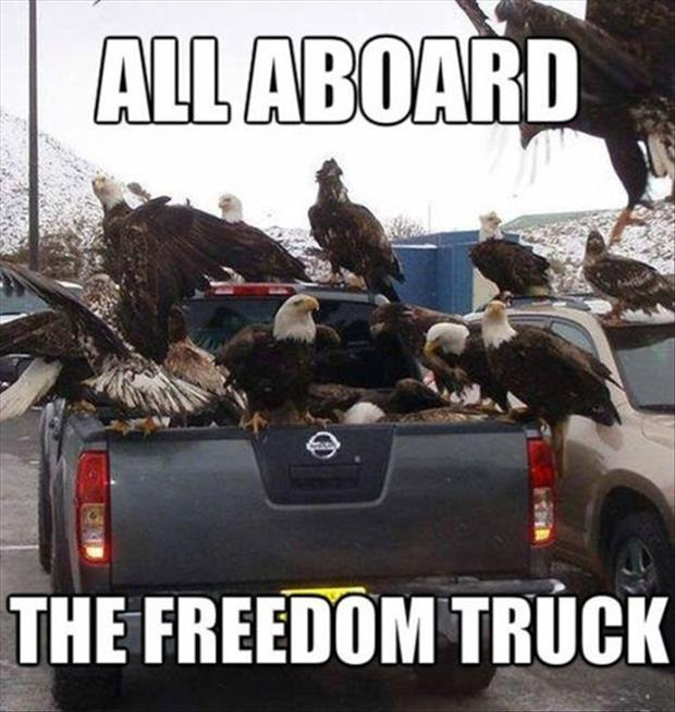 All aboard the freedom truck Picture Quote #1