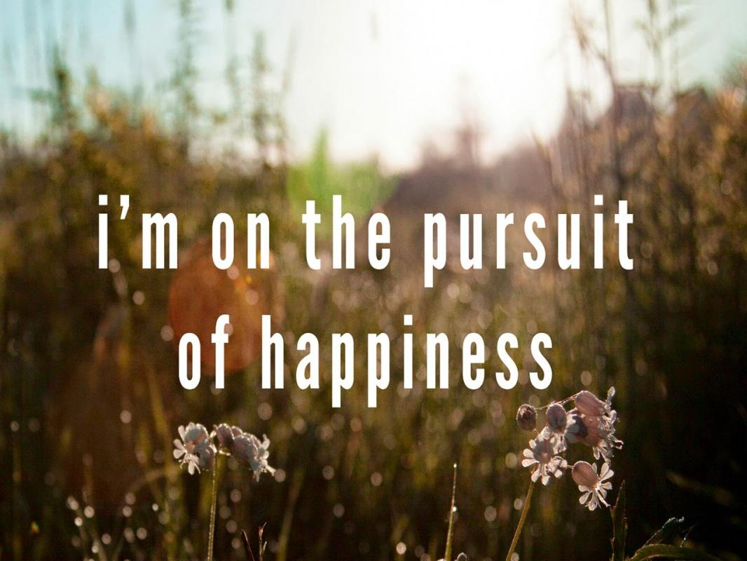 The Pursuit Of Happiness Quotes I'm On The Pursuit Of Happiness  Picture Quotes