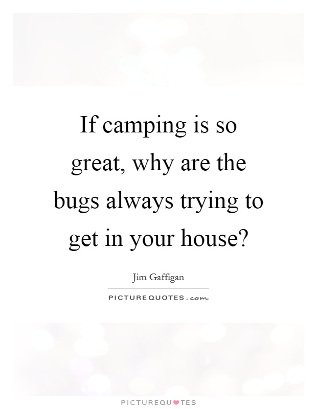 If camping is so great, why are the bugs always trying to get in your house? Picture Quote #1