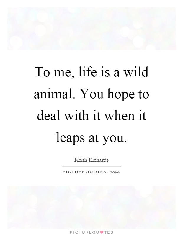 To me, life is a wild animal. You hope to deal with it when it leaps at you Picture Quote #1