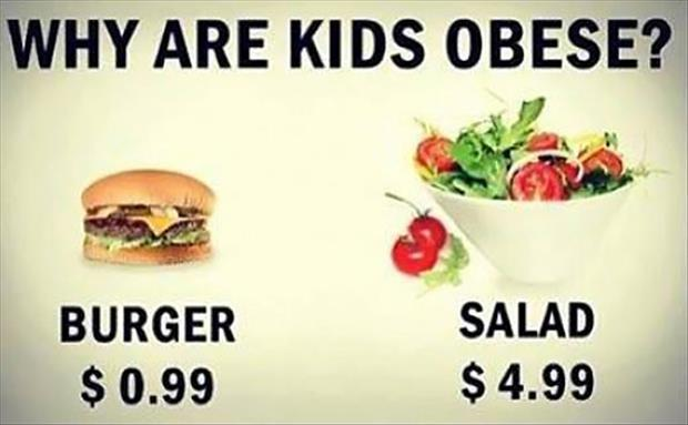 Why are kids obese? Burger $0.99 Salad $4.99 Picture Quote #1