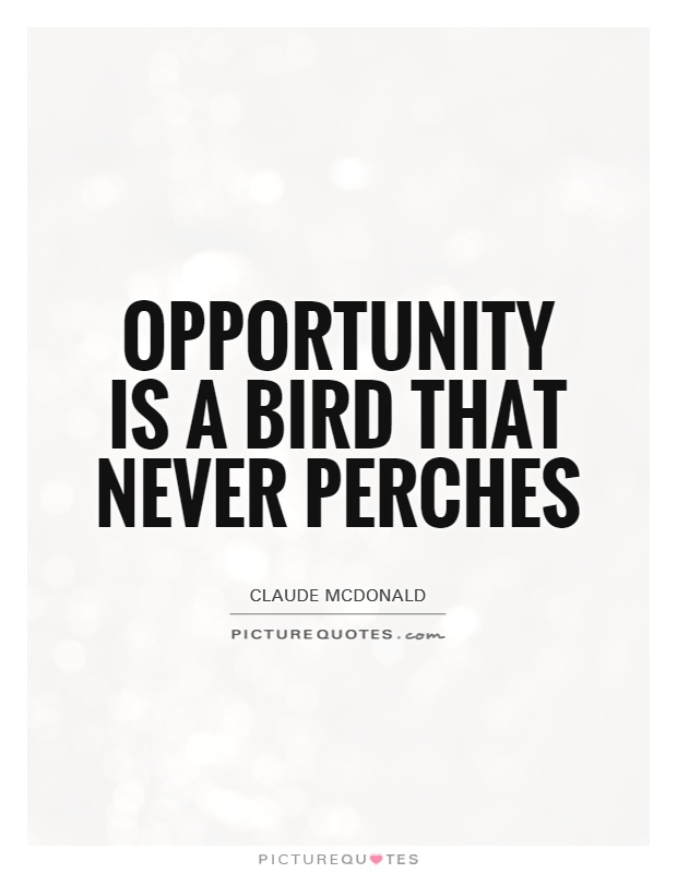 Opportunity Is A Bird That Never Perches Picture Quotes
