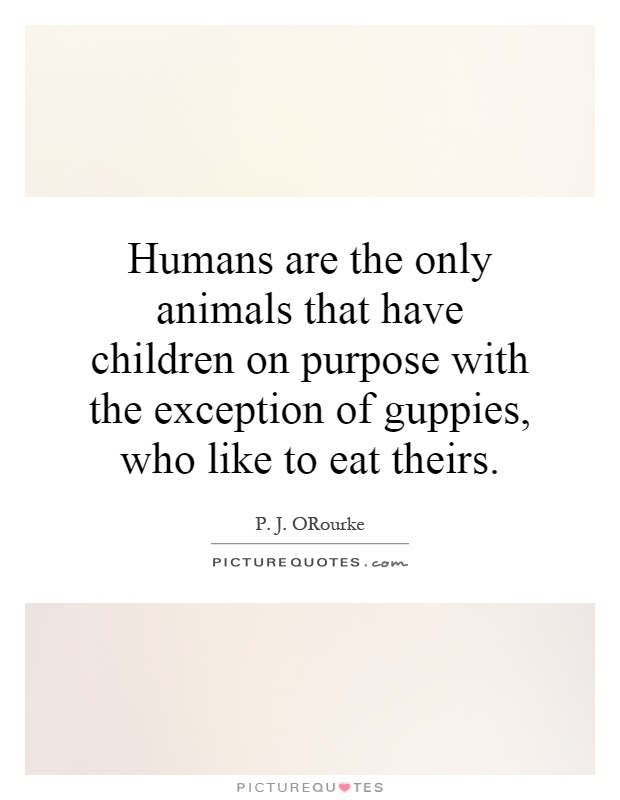 Humans are the only animals that have children on purpose with the exception of guppies, who like to eat theirs Picture Quote #1