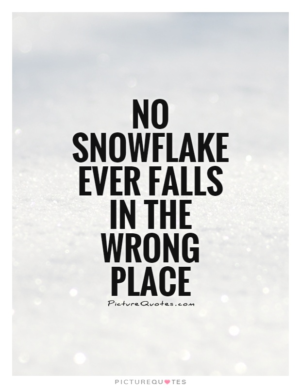 No Snowflake ever falls in the wrong place Picture Quote #1