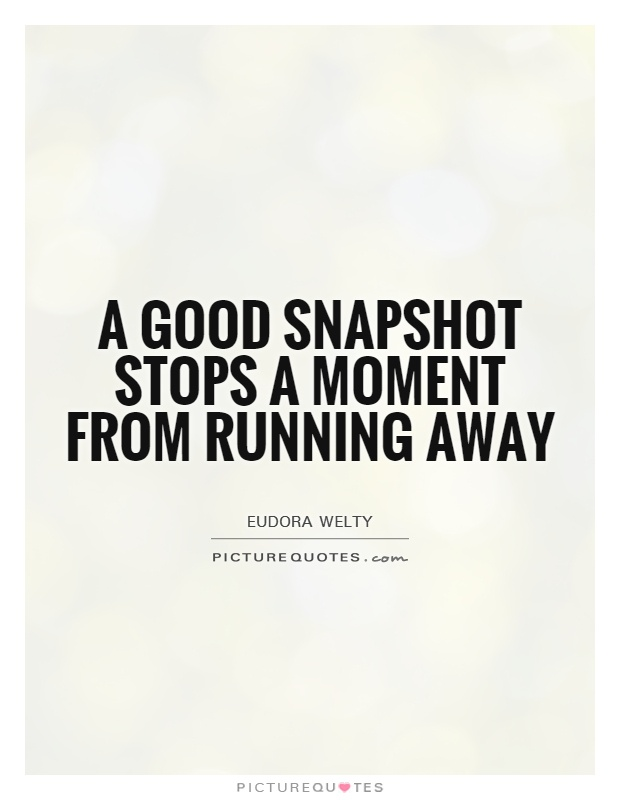 A good snapshot stops a moment from running away Picture Quote #1