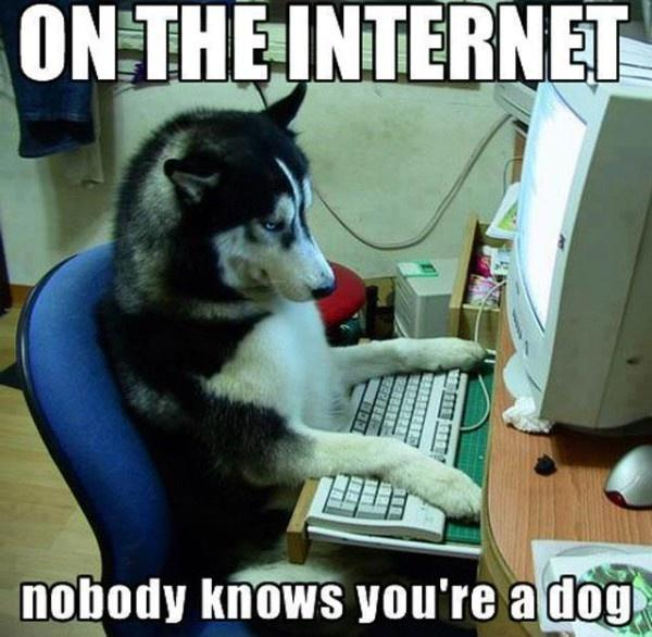 On the Internet, nobody knows you're a dog. Nobody Picture Quote #2