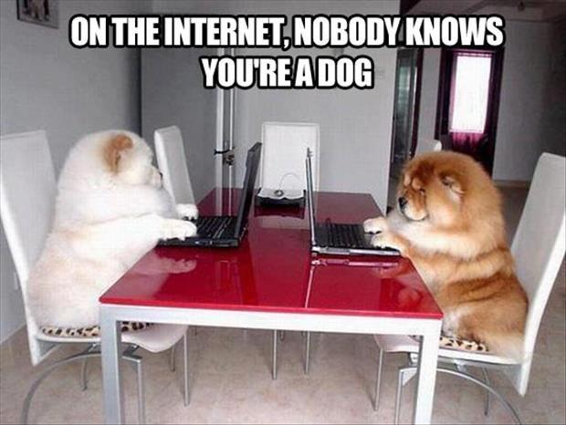 On the Internet, nobody knows you're a dog. Nobody Picture Quote #3