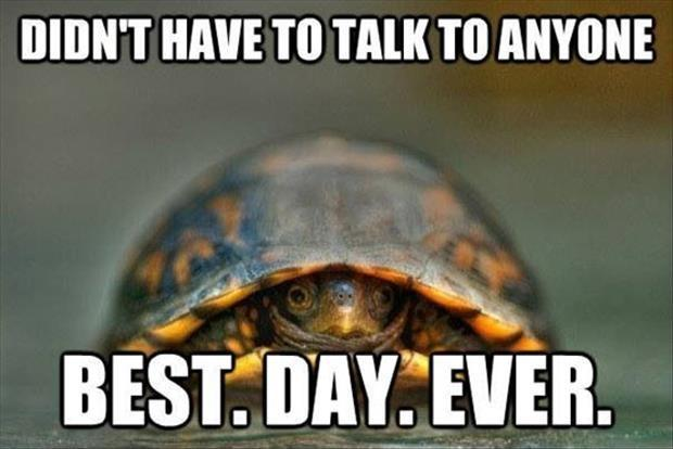 Don't have to talk to anyone. Best. Day. Ever Picture Quote #1