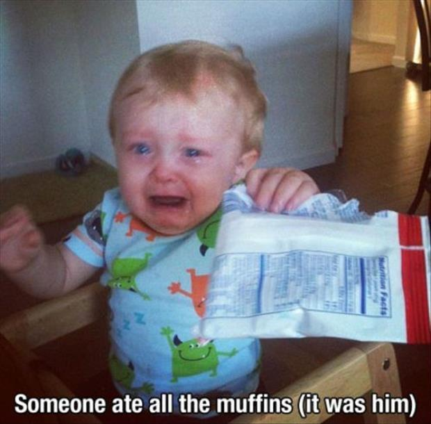 Someone ate all the muffins (it was him) Picture Quote #1