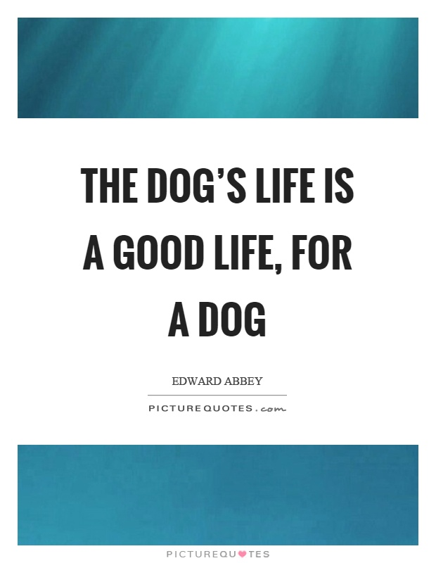 The dog's life is a good life, for a dog Picture Quote #1