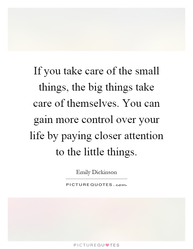 If you take care of the small things, the big things take care of themselves. You can gain more control over your life by paying closer attention to the little things Picture Quote #1