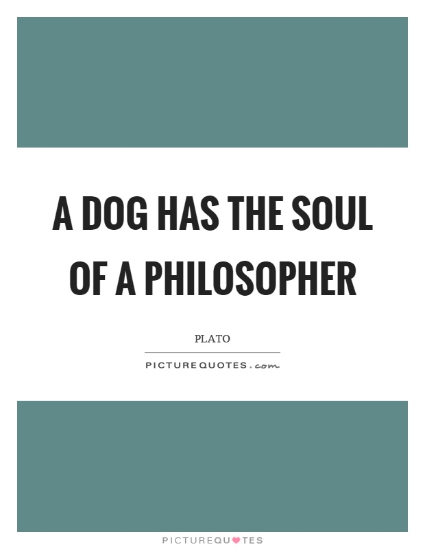 A dog has the soul of a philosopher Picture Quote #1