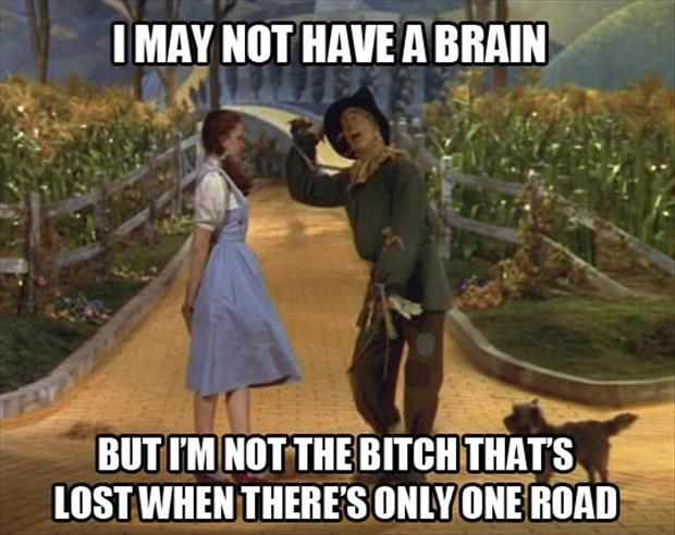 I may not have a brain, but I'm not the bitch that's lost when there's only one road Picture Quote #1