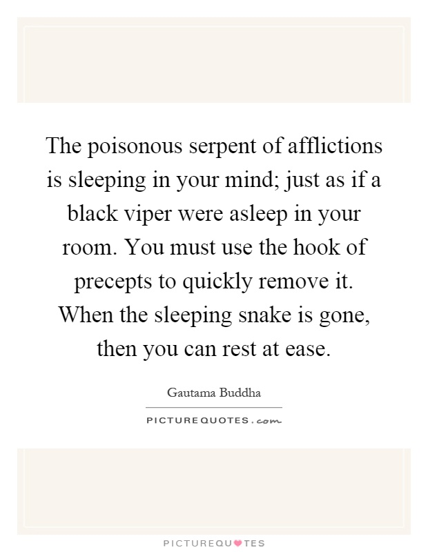 The poisonous serpent of afflictions is sleeping in your mind; just as if a black viper were asleep in your room. You must use the hook of precepts to quickly remove it. When the sleeping snake is gone, then you can rest at ease Picture Quote #1