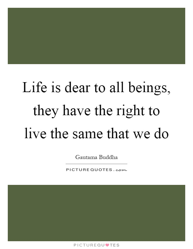Life is dear to all beings, they have the right to live the same that we do Picture Quote #1