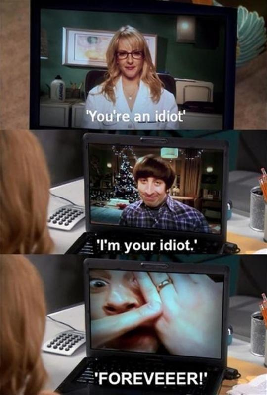 You're an idiot. I'm your idiot. Foreveeer! Picture Quote #1