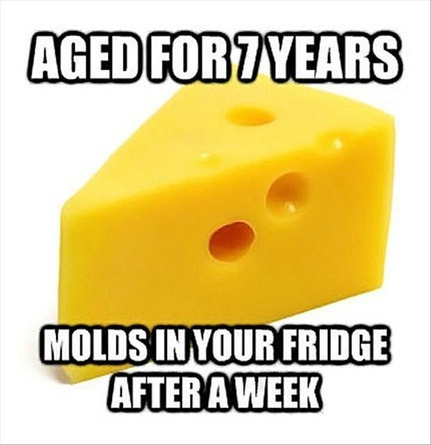 Aged for 7 years. Molds in your fridge after a week Picture Quote #1