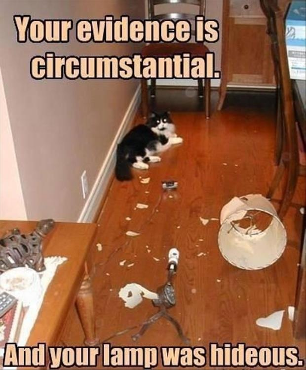 Your evidence is circumstantial. And your lamp was hideous Picture Quote #1