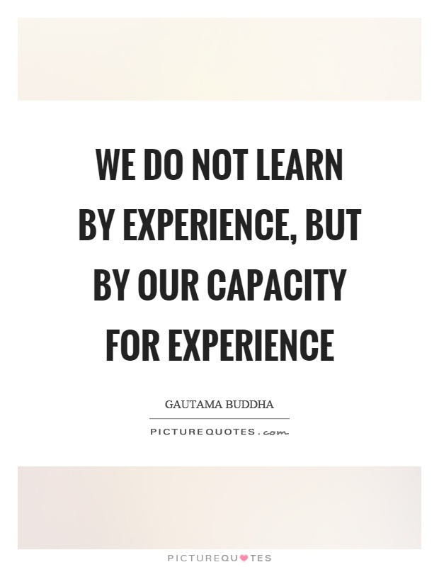 We do not learn by experience, but by our capacity for experience Picture Quote #1