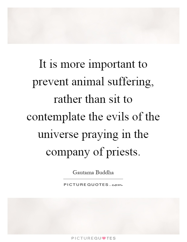 It is more important to prevent animal suffering, rather than sit to contemplate the evils of the universe praying in the company of priests Picture Quote #1